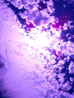Purple gorgeousness