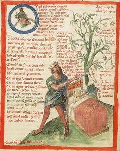 Il secondo sogno di Nabucodonosor - Liber Floridus (Lille, 1460), Koninklijke Bibliotheek
