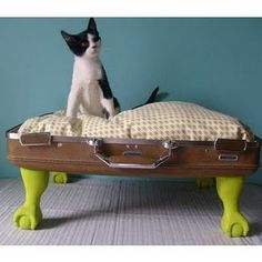 Pet bed!  I LOVE this idea & plan to make one if we end up buying an indoor dog this fall. :)