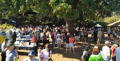 We had a great turnout for the 2013 Mole & Mariachi Festival. This year's event is Sept. 20 at the Santa Cruz Mission Adobe State Historic Park.