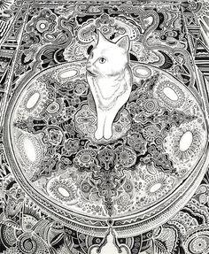 IMPRIMER  Blanc chat  Dessin d'un chat mignon par OliverRobertson