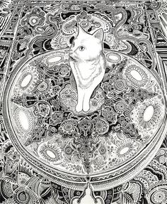 White cat drawing. Cat art. Micron pen and ink art by Oliver Michael Robertson
