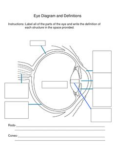 Anatomy eye diagram to label kids science experiments crafts anatomy eye diagram to label kids science experiments craftsschool ideas pinterest diagram science fair and school ccuart