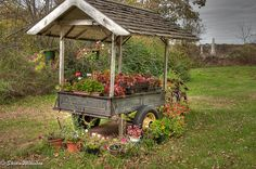 Flower Cart-Maybe Dave will make this for me?
