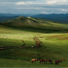 Mongolia...the beloved homeland of Genghis Khan who is a character in Prismland and Earth 1 by Johan Adkins.