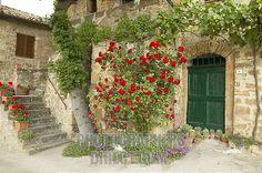 ... facade of old Tuscan farmhouse , Val dOrcia , Italy