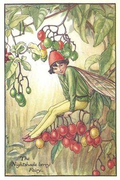 http://www.wellandantiquemaps.co.uk/lg_images/The-Nightshade-berry-Fairy.jpg