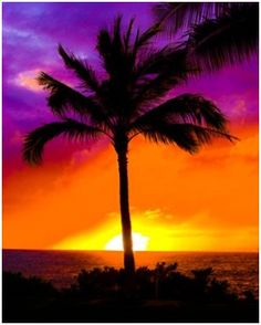 A #Hawaiian sunset that reminds us of a tropical drink. What kind of drink would this be? Lava Flow? Bay Breeze?