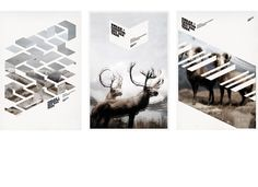 Mark Brooks Graphik Design » SWAAN + CHRISTOS (via http://designspiration.net/image/6957/)