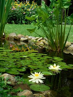 Waterfeatures - Ponds, Waterfalls, and Fountains