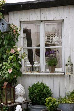 Im Garten kann man den Pflanzen beim wuchern wachsen zusehen. Im letzten Jahr hatte ich am Zaun vom Gärtchen ein neues Beet ange...