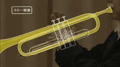 Gif pic showing trumpet air flow patterns