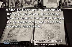 Лако је научити животињу, лако је научити простака, али је тешко научити онога ко је ненаучен већ постао учитељ другима. (Свети Владика Николај Србски)