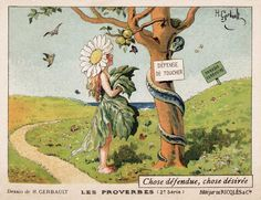 Héraldie: Les proverbes en images