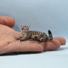 Handmade sculpted miniature polymer clay furred tabby cat for dollhouse and miniature decor Polymer Clay Cat, Polymer Clay Animals, Clay Cats, Clay Food, Clay Miniatures, Diy Clay, Miniture Things, Sculpting, Fur