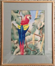 Shirrell Graves Red Macaw Art Deco Watercolor & Airbrush