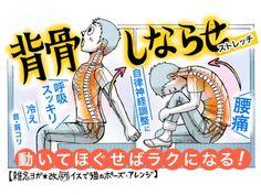 腰痛予防から背中のコリ緩和に「背骨しならせストレッチ」で...
