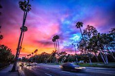 Santa Monica Boulevard Sunset    Beverly Hills, CA