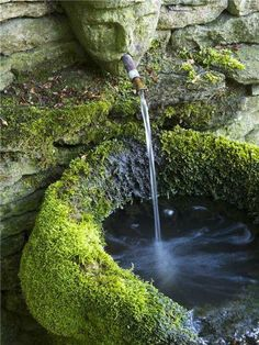 Water fountain. Love old stone head in stone wall..