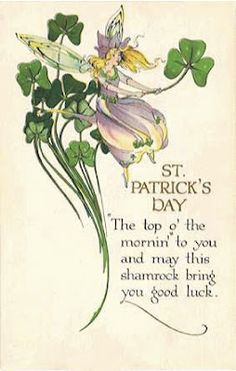 THE SHAMROCK PLANT The Shamrock is a traditional symbol of Ireland & thought to bring good luck. It is a three-leafed clover that . St Patricks Day Cards, Happy St Patricks Day, Saint Patricks, Shamrock Plant, Erin Go Bragh, Irish Blessing, St Paddys Day, Luck Of The Irish, Holiday Postcards