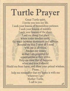 TURTLE-Prayer-Parchment-Page-for-Book-of-Shadows