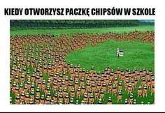 Wtf Funny, Creepypasta, Attack On Titan, Besties, City Photo, Haha, Naruto, Humor, Memes