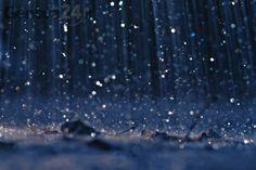 Rain autumn cold