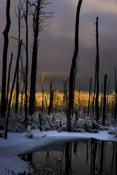 winter light by Marianna Armata, via 500px