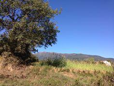 Parc Natural del Montseny. Catalonia