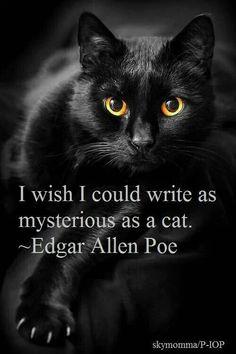 Edgar Allan Poe's The Black Cat: Summary & Analysis