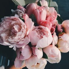 I just love pink flowers, they're so delicate!