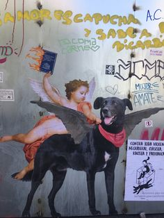 Chile Protestas Collages, Chile, Post Punk, Street Art, Concept, Halloween, Pets, Painting, Wall