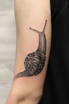 Snail Tattoo by Iñaki Beaskoa at Siha Tattoo