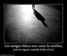 Los amigos falsos son como la sombra, solo te siguen cuando brilla el Sol.