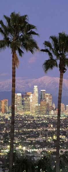 Be like a local in Los Angeles & explore it like never before using TripHobo Trip Planner.