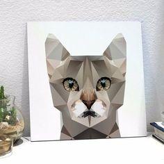 placa polygon cat