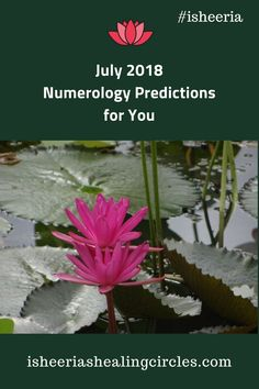 Numerology Predictions for you and your loved ones for the month of July 2018 Expression Number, Month Of July, Numerology, Reiki, First Love, Healing, Parenting, Blog, Circles