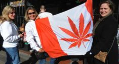 RussIa says Canada weed legalization is a breach' of international legal obligations Happy Canada Day, Cannabis Plant, Medical Marijuana, Funny Images, Weed, Vancouver, Traveling By Yourself, At Least, Poses