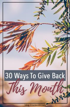 This season is all about giving back, and we're here with 30 easy ways to give back for each day of November. Teacher Appreciation Week, Giving Back, Best Teacher, Give Thanks, Helping People, Gratitude, Grateful, November, Holidays