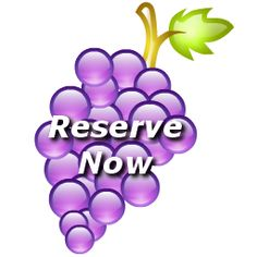 Bluebonnet Transportation has been in business since 1998. Our drivers have been professionally trained in all the details of the wine tours. We are constantly coming up with new wine tours and other special tours that you can find here. Be sure to visit our affiliate website at www.bluebonnetlimos.com
