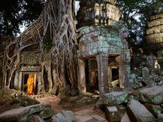 Le radici di Angkor