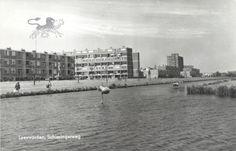 schieringerweg 1965 Historisch Centrum Leeuwarden - Leeuwarden, Schieringerweg
