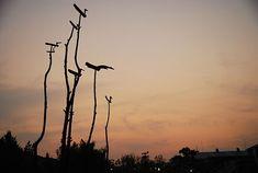 솟대, a pole signifying prayer for good harvest, korean shaman tradition