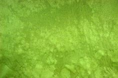 http://grungetextures.com/freebies/download/2-stains-on-green-paper.jpg