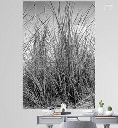 Helmgras in Zwart wit van licht grijs naar zilver tot zwart. Helmgras in duinen van Ameland op een zomerse dag in juli met een wolk op de achtergond. Canvas, Plants, Clouds, Tela, Canvases, Plant, Planets