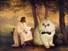 Two super awesome things that definitely go together. Jesus and cats.