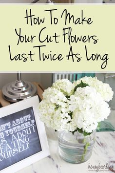 how to make your cut flowers last twice as long, so helpful because I love having fresh flowers but mine die so quickly!!