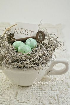 **Country Charm** robin egg nest