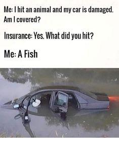 Haha Funny, Funny Shit, Funny Stuff, Funny Memes, Hilarious, Jokes, Lol, Dark Memes, Funny Messages