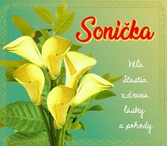 meninové priania Plants, Blog, Plant, Planting, Planets